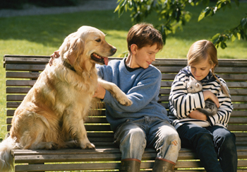 Children and pets on park bench